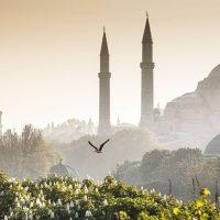 Что посмотреть в Стамбуле: маршруты для транзитных пассажиров