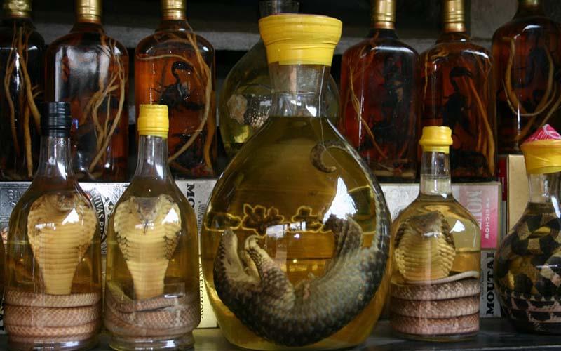 Йа-Донг. Это спиртовая настойка на морских коньках или змеях