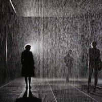 Шарджа запрошує в справжню кімнату дощу