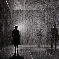 Шарджа приглашает в настоящую комнату дождя