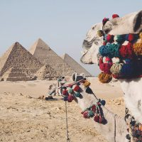 Тури в Єгипет з Одеси