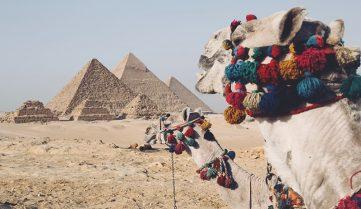 Отдых в Египте из Одессы