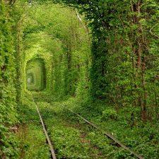 «Тоннель любви» теперь будет платным