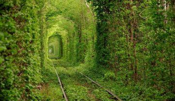 «Тунель кохання» тепер буде платним!