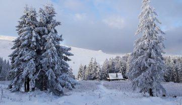 Горнолыжные туры в Словакию, Вратна