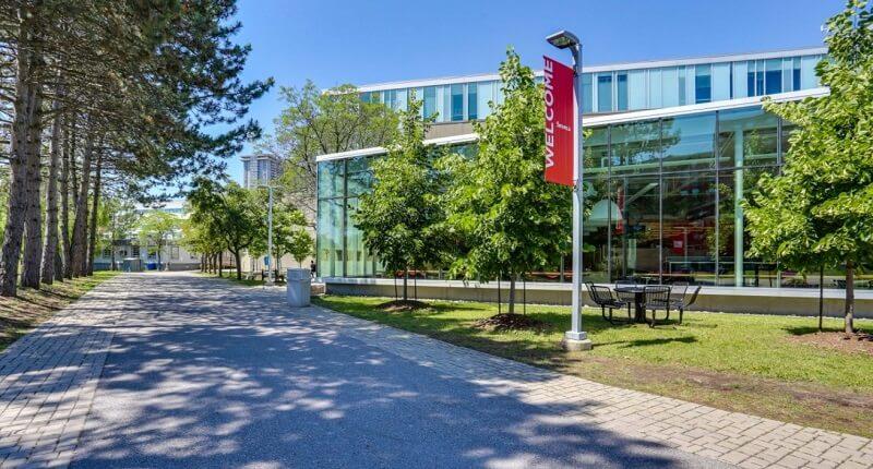 Сенка колледж в Торонто