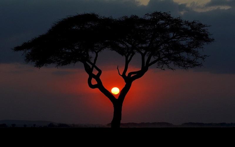 Курорты Кении