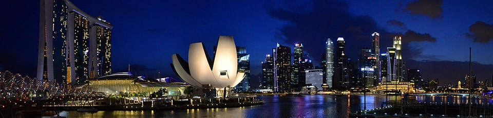Тури в Сінгапур