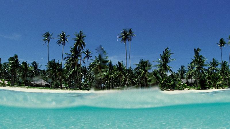 Остров Мафия