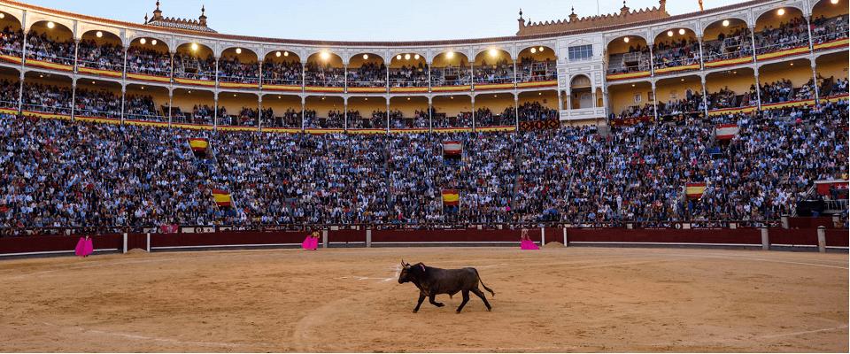 Арена Лас-Вентас Мадрид
